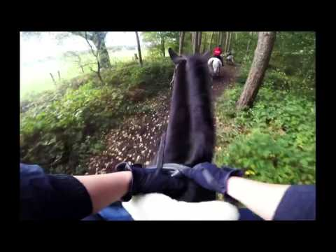 Kelsall Hill Farm Ride & Gallops with GoPro