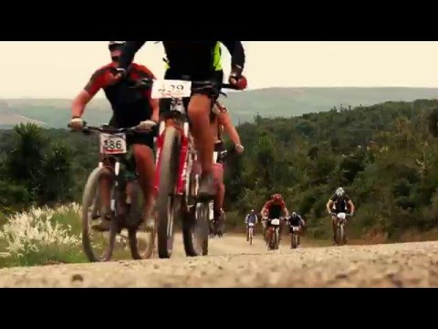 The Herald VW Cycle Tour 2016