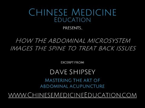 How the Abdominal Microsystem Images the Spine
