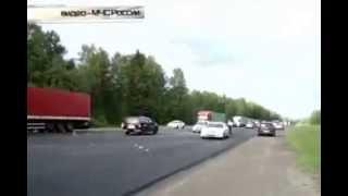 Жертвами аварии под Смоленском стали элитные собаки
