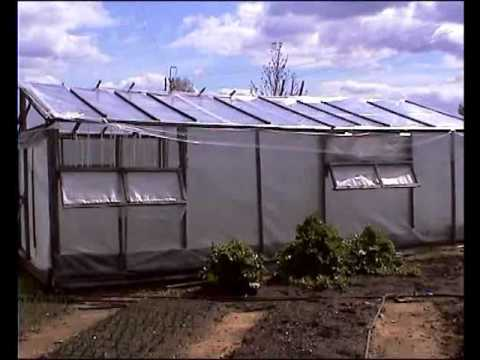 видео: Теплица для помидоров