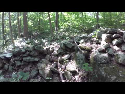 Exploring Track Rock Gap Archaeological Site in Chattahoochee National Forest