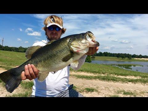 Zoom brush hog vs yum christie critter doovi for Lunkerstv fishing rods
