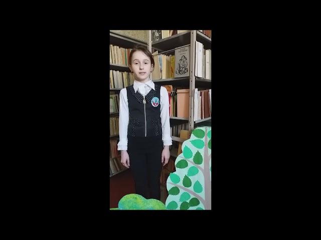 Изображение предпросмотра прочтения – АнастасияДудник читает произведение «Моя школа» О.В.Фокиной