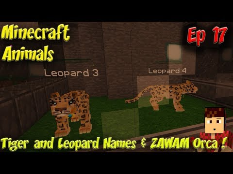 Minecraft Animals Ep17 Tiger and Leopard Names ZAWAM Orca