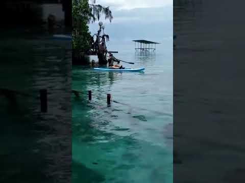 open trip pulau macan island..