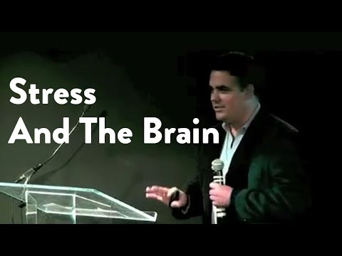 Stress and the Brain: Dr Andrew Heyman  [Functional Forum]
