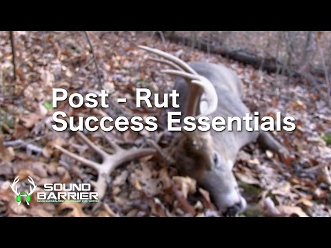 Post-Rut Success Essentials