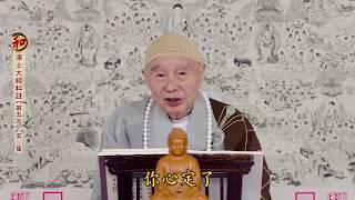 Tịnh Độ Đại Kinh Khoa Chú 2018 - tập 003 - PS Tịnh Không