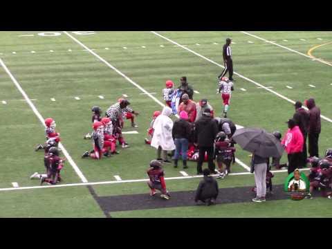 SWAC Cougars vs. Renton Rangers Peewees 2016