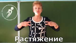 Физический словарь (жестовый перевод) СПШ№14