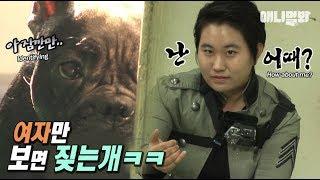 개혼돈-ㅋㅋㅋㅋ-ㅣ-dog-only-barks-at-ladies-lol