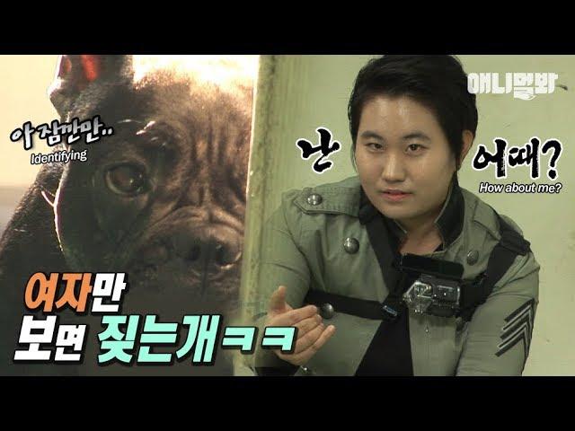 (개혼돈..ㅋㅋㅋㅋ) ㅣ Dog Only Barks At Ladies LOL