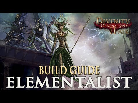 Divinity Original Sin 2 Builds - Elementalist (Mage)