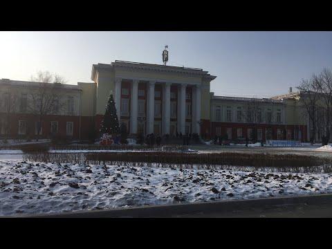 МИТИНГ 28.12.219 город Артем