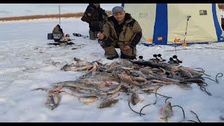 Первый лед 2019 2020 Турбоклев продолжается Рыбалка в Якутии