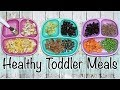 WHAT I FEED MY TODDLER IN A DAY || Simple + Healthy Meals!