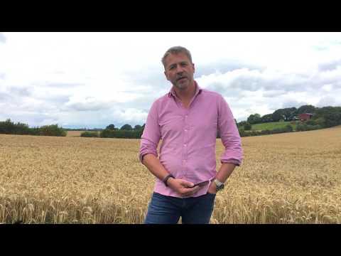 West region harvest update: Clive Bailye