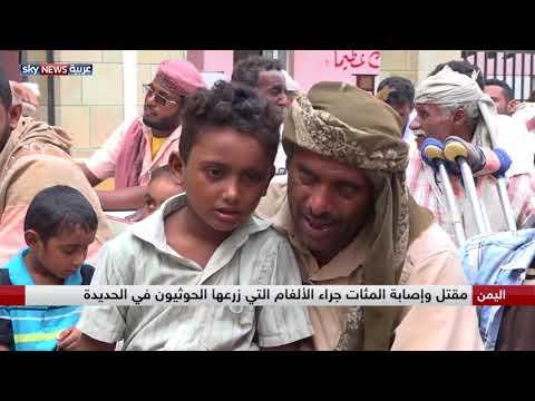 حملات توعية بمخاطر الألغام التي زرعها الحوثيون في الساحل الغربي  - نشر قبل 2 ساعة