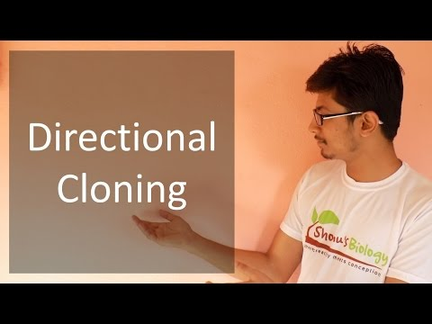 Directional Cloning