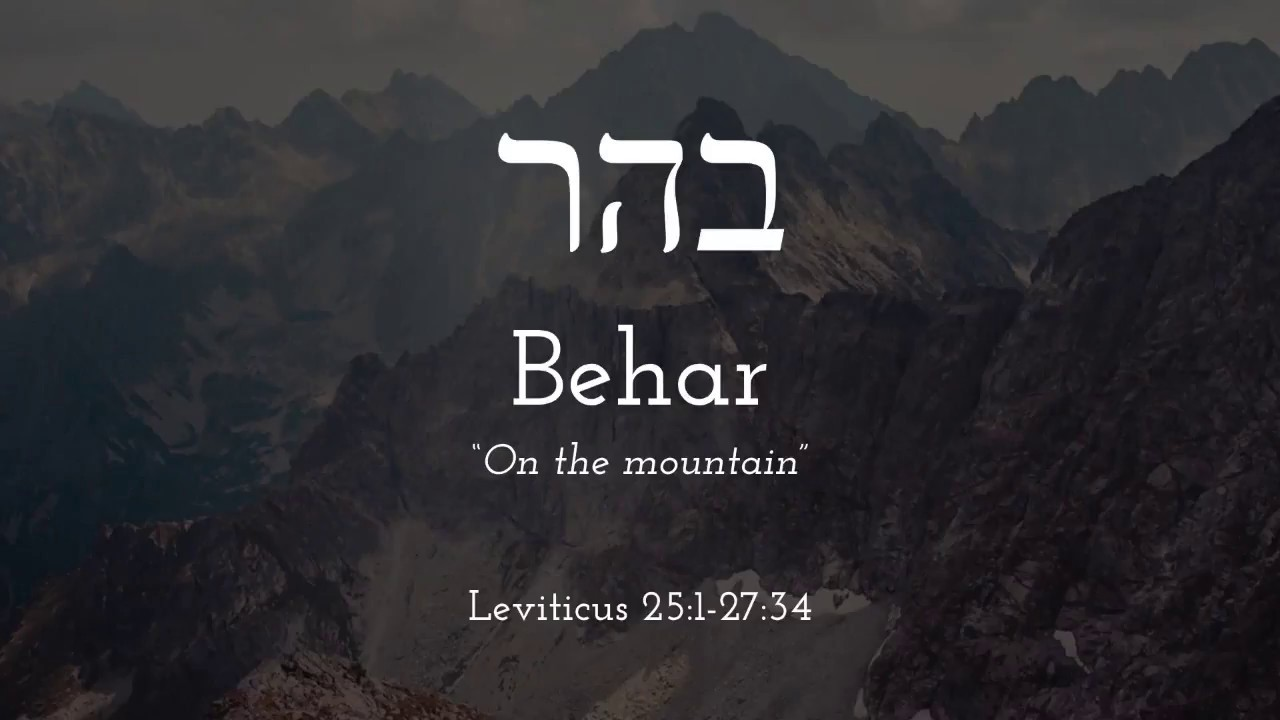 Behar- Free Biblical Hebrew Lessons