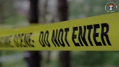 How is a forensic scene protected & initially examined?