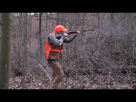 Pennsylvania Grouse Hunting