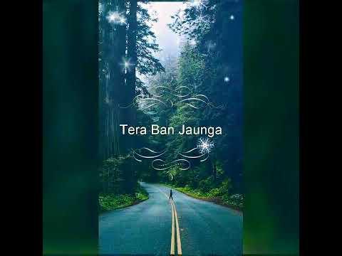 tera-ban-jaunga-(ringtone)