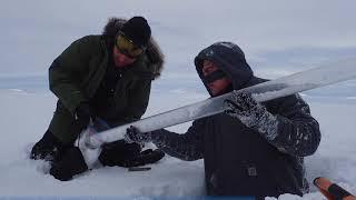 NGEE Arctic