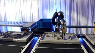 Dematic Multishuttle with Piece Picking Robot