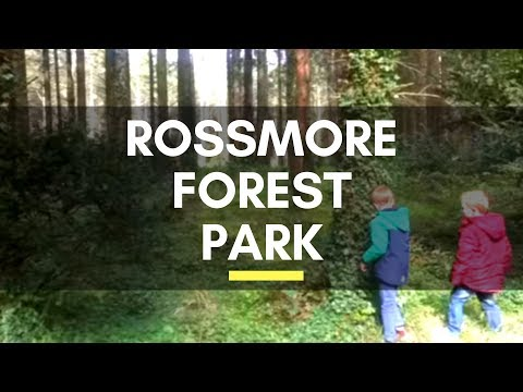 Rossmore Forest Park - Monaghan - County Monaghan - Ireland - Ireland Travel - Ireland Trip