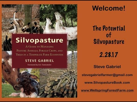 The Potential for Silvopasture, Part 1