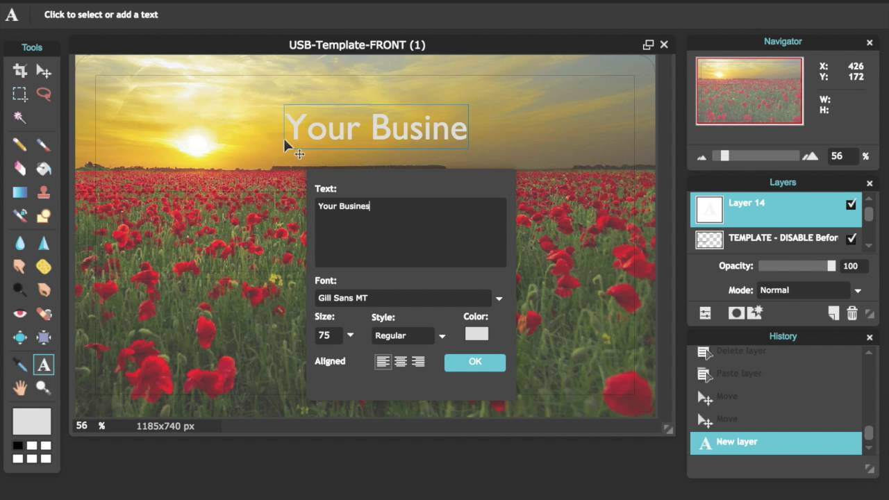 How to Design Your Own Custom USB Business Card for Free with PIXLR ...