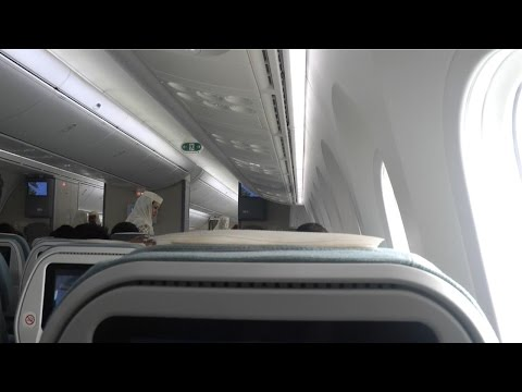 787-8 Dreamliner Royal Brunei Airlines, Singapore to Bandar Seri Bagawan