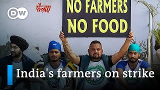 Indian farmers launch nationwide strike over new laws | DW News
