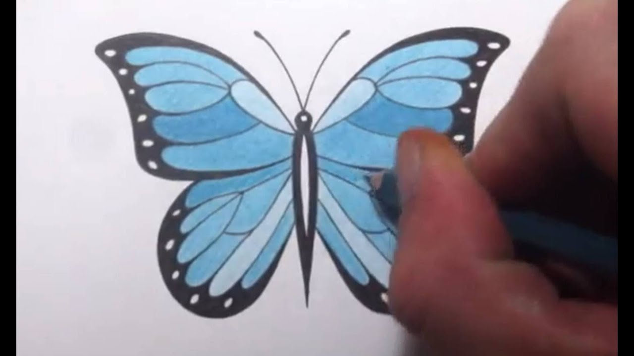 Uncategorized How To Draw An Easy Butterfly how to draw a butterfly youtube