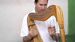 Maestro Luis Jaime Gomez, interpretando musica llanera.  (PARTE 2)