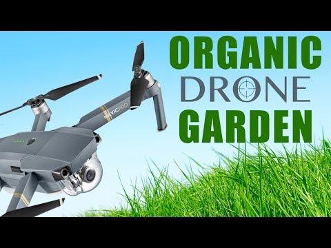 Organic Drone Garden : Day 1