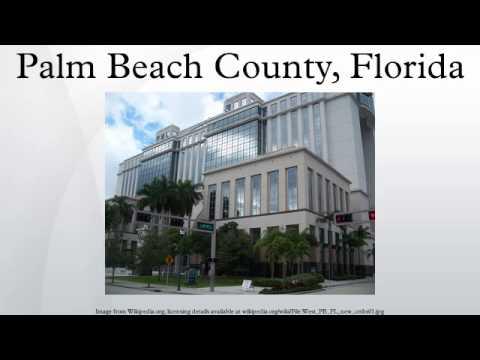Erwachsener Tagesunterricht Palm Beach County