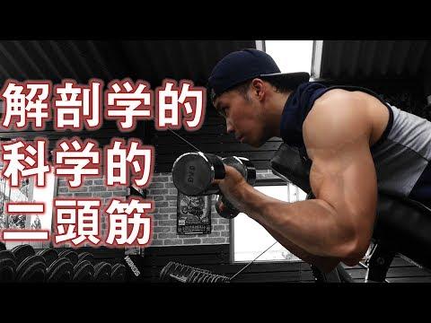 上腕二頭筋の鍛え方【解剖学的科学的アプローチ】