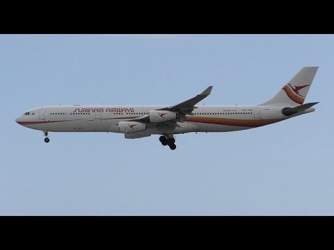 Surinam Airways Airbus A340-313 PZ-TCR Landing at Tenerife South Airport (Operating for ArkeFly)