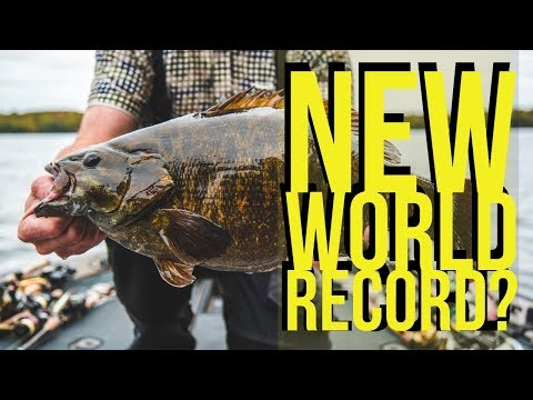 World Record Smallmouth Bass IGFA Pending