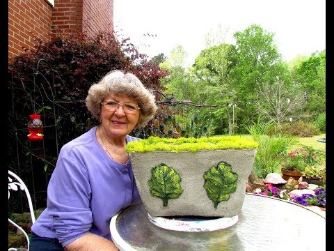 My Portland Cement leaves and moss big flower pot in Ga. USA