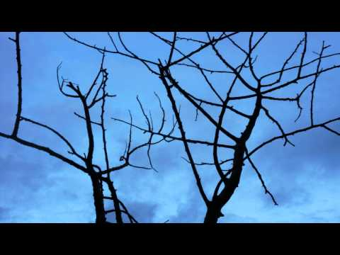 oscar-rojo:-reveal-|-free-soundtrack-|-royalty-free-music