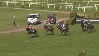 Vidéo de la course PMU PRIX JEAN BERNADOTTE