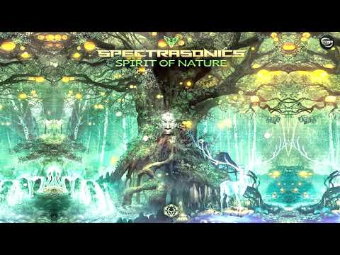 Spectra Sonics - Something In The Woods