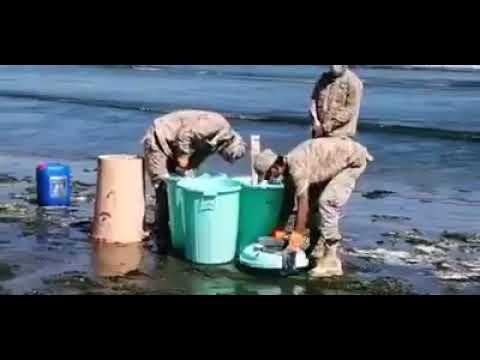 اتلاف ربع طن من المخدارت تم ضبطها في ميناء العاصمة عدن من قبل قوات الامن