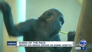 Denver Zoo Breaks Ground On State-of-the-art Animal Hospital