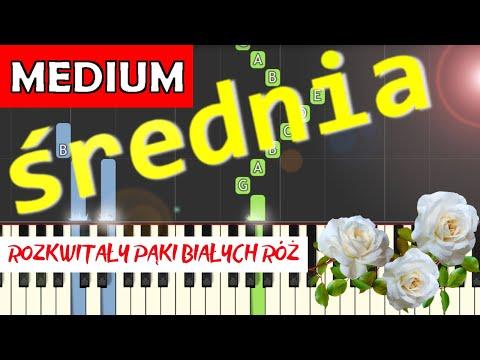 🎹 Białe róże (pieśń patriotyczna) - Piano Tutorial (średnia wersja) 🎹