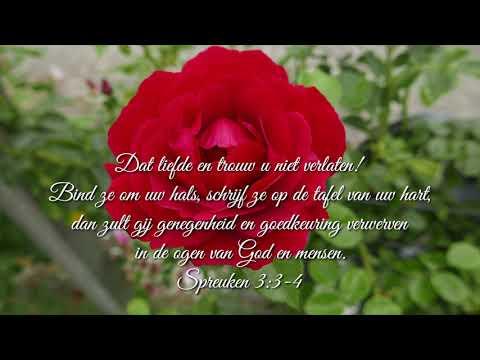 Bemoedigende Bijbelteksten